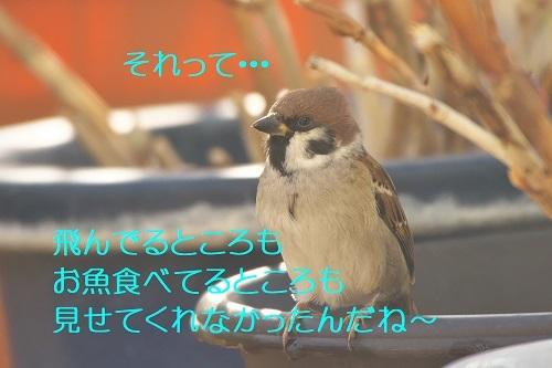 140_202001282234108ee.jpg