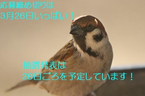 160_202003192138576b5.jpg