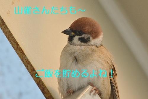 170_20191107221847e51.jpg