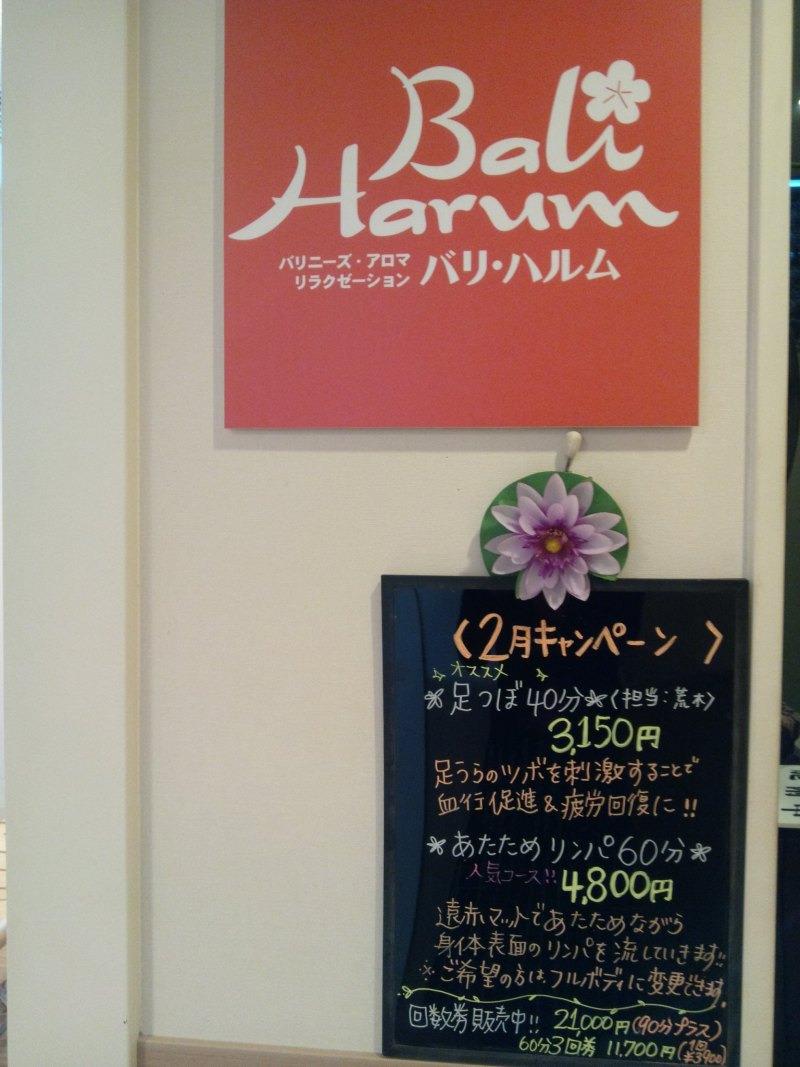 レイキ&マヤ暦☆光のサロン☆彡ブログ-130225_153942.jpg