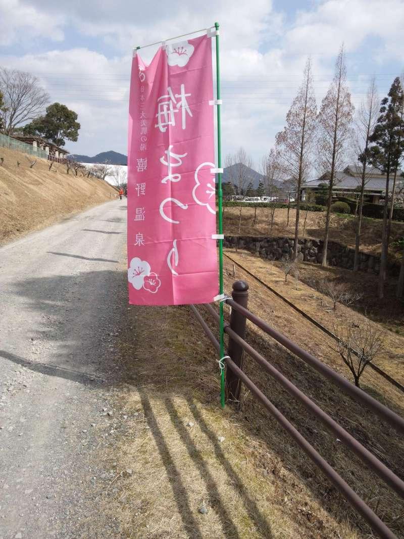 レイキ&マヤ暦☆光のサロン☆彡ブログ-130303_133556.jpg