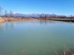 全面結氷したため池