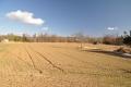 雪が融けた畑