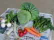 画題の野菜