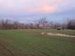 麦畑の夕陽