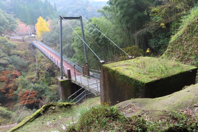 県民の森公園の吊橋1