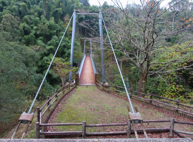 県民の森公園の吊橋2