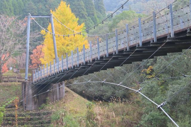 県民の森公園の吊橋4