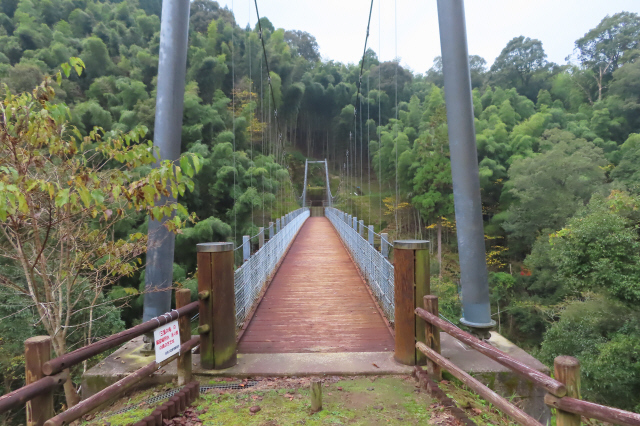 県民の森公園の吊橋6