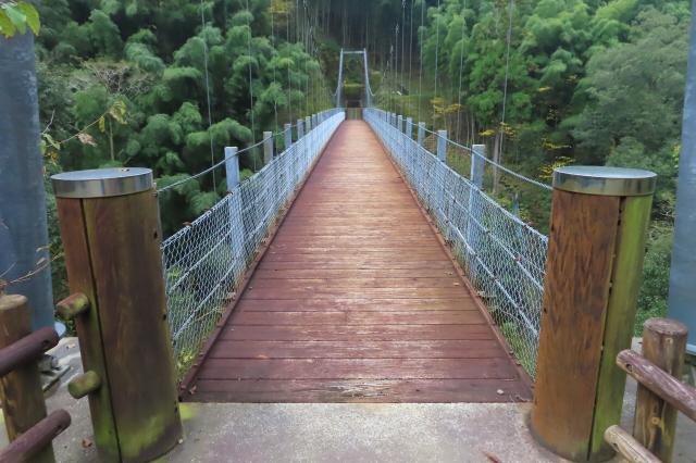 県民の森公園の吊橋7