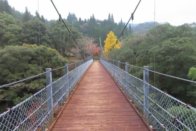 県民の森公園の吊橋8