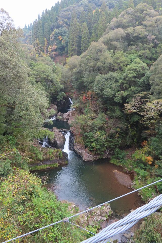 県民の森公園の吊橋9