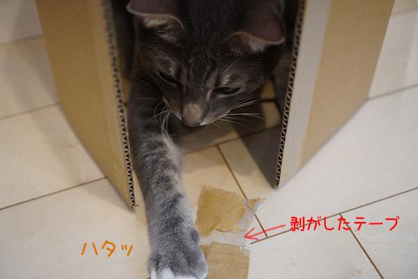 200514_3.jpg