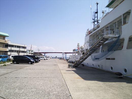 三浦半島釣り (12)