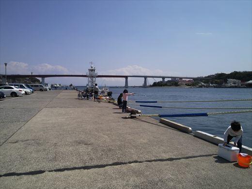 三浦半島釣り (13)