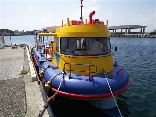 三浦半島釣り (15)
