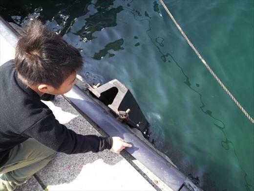 三浦半島釣り (16)