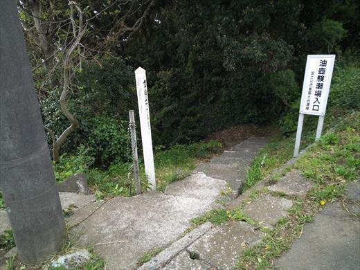 三浦半島釣り (24)