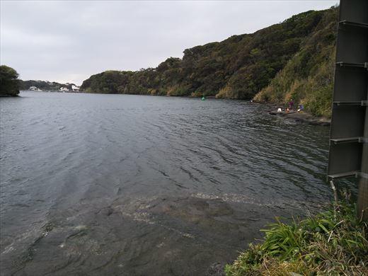 三浦半島釣り (25)