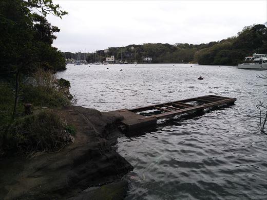 三浦半島釣り (28)
