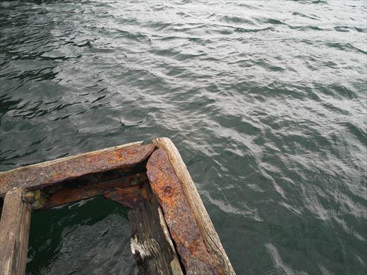 三浦半島釣り (30)