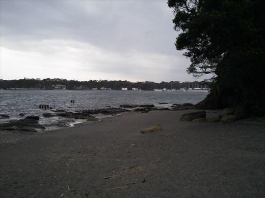 三浦半島釣り (32)
