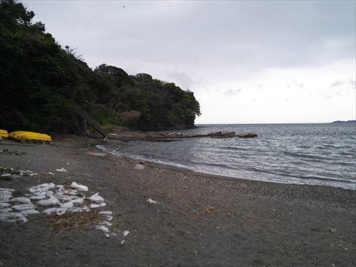 三浦半島釣り (33)