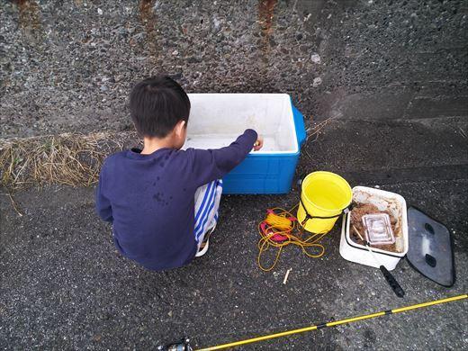 三浦半島釣り (44)