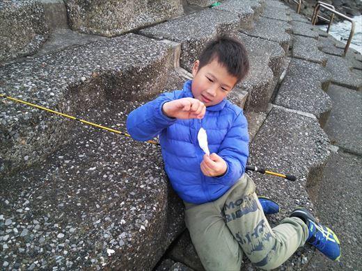 三浦半島釣り (52)