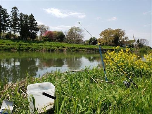 川で鯉釣り? (2)