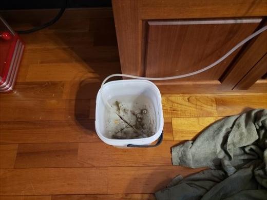 水槽掃除 (9)