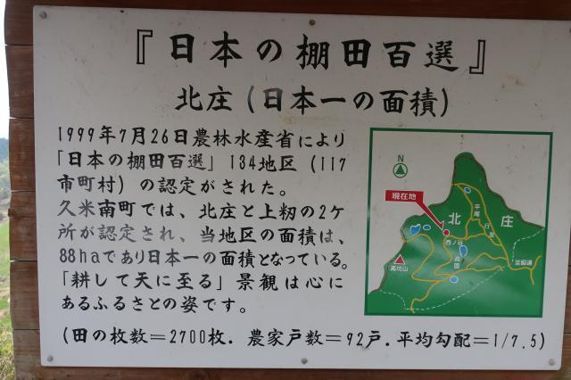 IMG_0979[1]