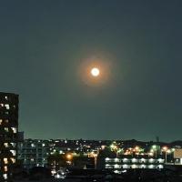 スーパームーン満月AB9C7229-487C-4DB4-81A9-E877CDD5B50B