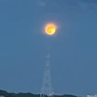 お月さまとちび龍IMG_1241