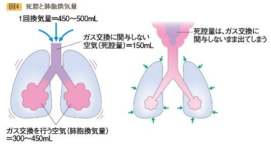 2020-4-2肺胞換気量