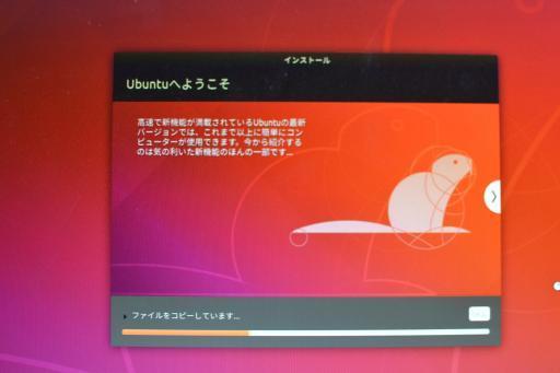 DSC_8219_convert_20200117224020.jpg