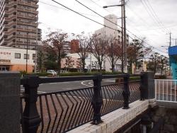 191203_05白山橋