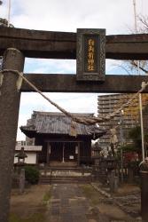 191211_17白角折神社