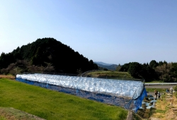 200325_05遠景