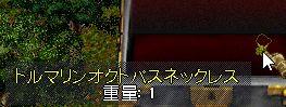 WS100065.jpg