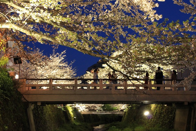 s-一の坂川(2)