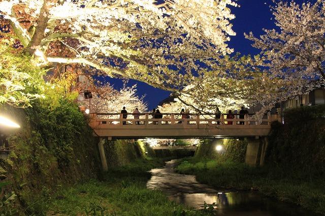 s-一の坂川(3)