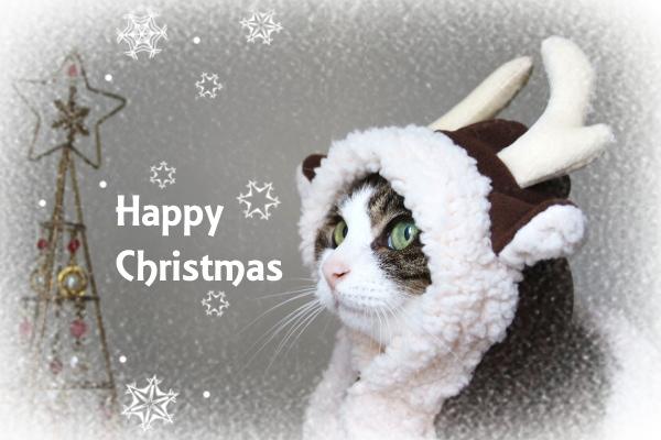 Happy Christmas 2019