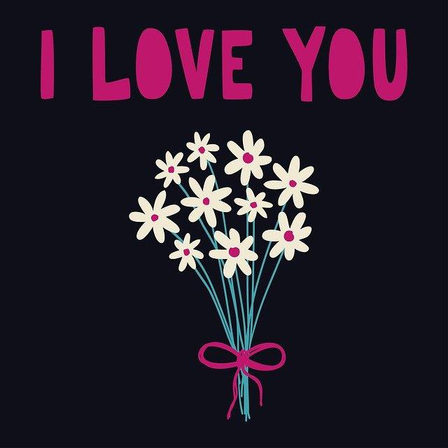 flowers-4659957_640.jpg