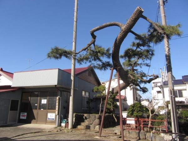 新宿公民館