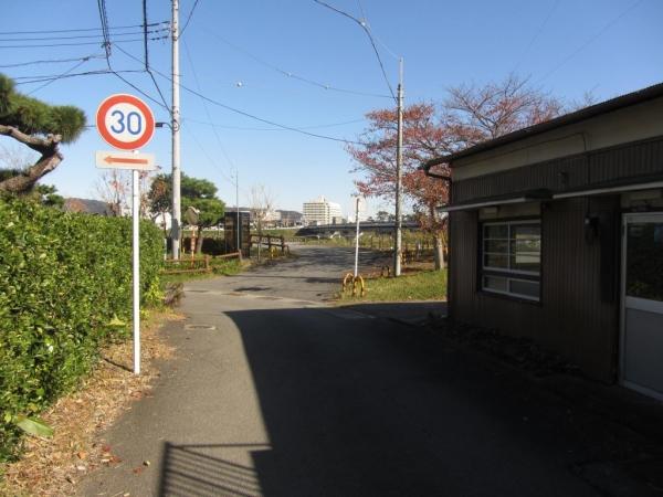 旧東海道 酒匂川右岸