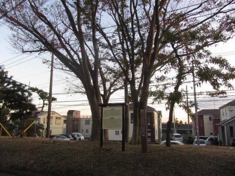 国府本郷中丸の一里塚跡