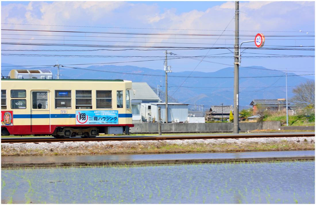 電車・助手2