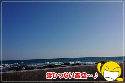 DSC_8289 (2)