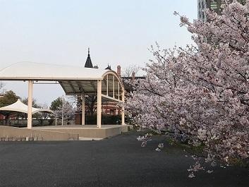 レトロの桜
